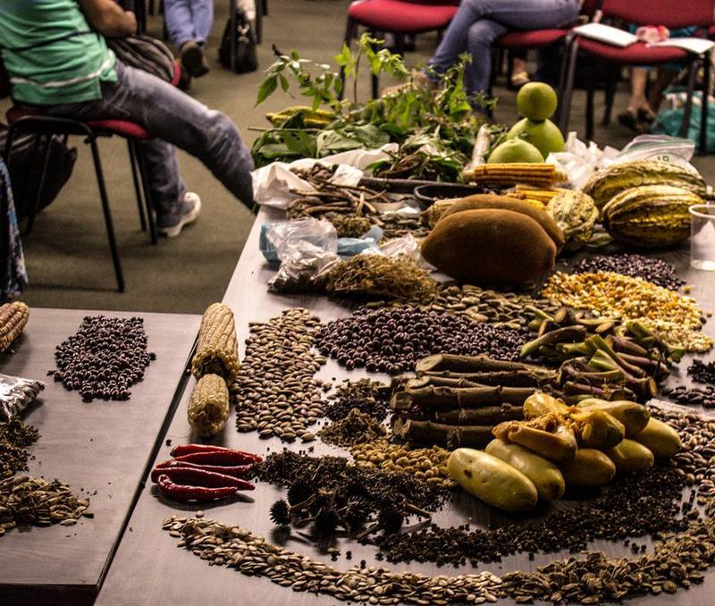 Grafica alusiva a Encuentro nacional de organizaciones locales y sociales para la defensa de las semillas libres de Colombia