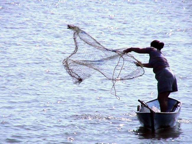 Grafica alusiva a Las mujeres en la pesca artesanal. Comunidades negras del Bajo Atrato Departamento del Chocó