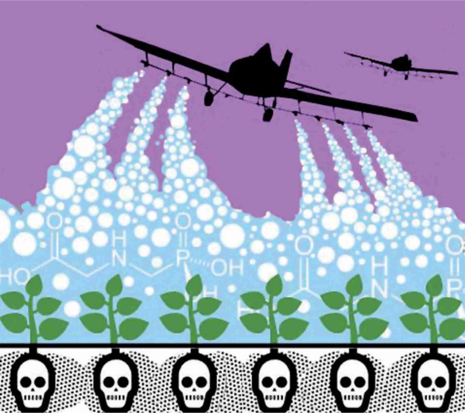 Grafica alusiva a Los agroquímicos y la vida de los seres de la madre tierra
