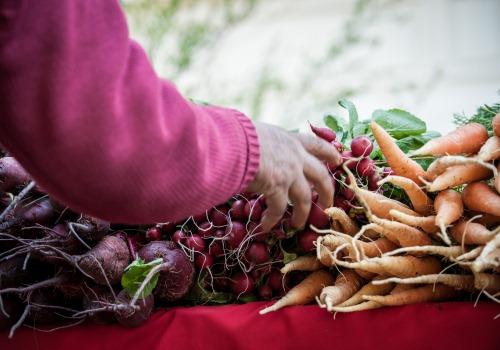 Grafica alusiva a Recuperando el alimento y las culturas ancestrales en la Altillanura colombiana