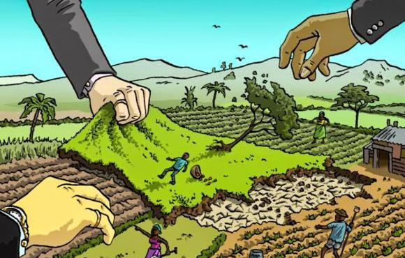 Grafica alusiva a Plan Nacional de Desarrollo: Exclusión y luchas del campesinado