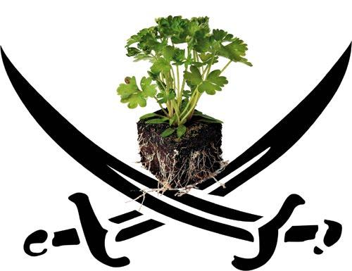 Grafica alusiva a Declaración de Johannesburgo sobre biopiratería, biodiversidad y derechos comunitarios