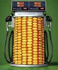 Grafica alusiva a Bio-combustibles: mitos de la transición de los agro-combustibles