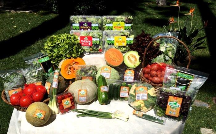 Grafica alusiva a Producción y comercialización de hortalizas orgánicas de la Asociación Campesina Agroecológica del Boquerón