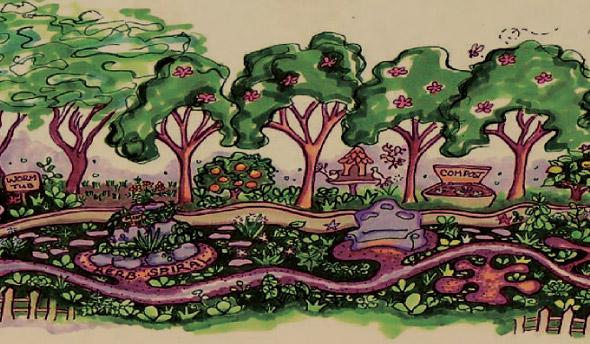 Grafica alusiva a Bosques Comestibles Diversificados (BCD)