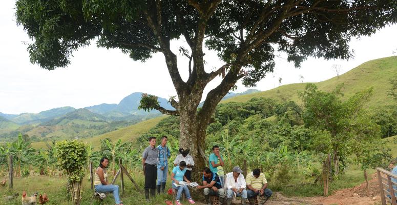 Grafica alusiva a Asociación Red Colombiana de Reservas Naturales de la Sociedad Civil