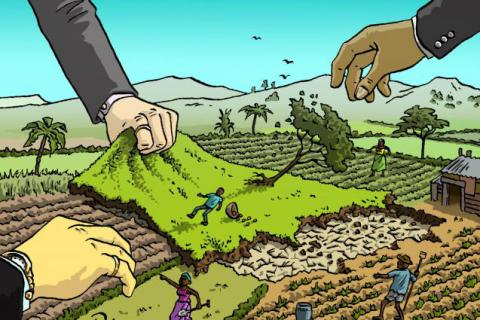 Grafica alusiva a Acaparamiento de tierras, fenómeno mundial con presencia en Colombia (1)