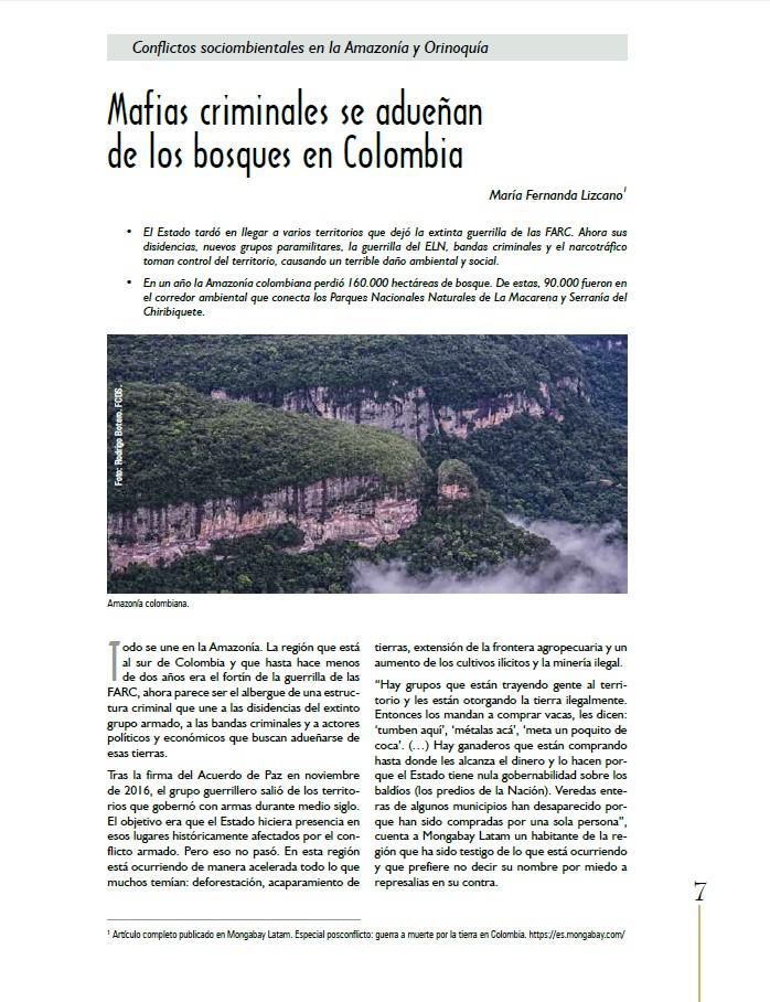 Grafica alusiva a Mafias criminales se adueñan de los bosques en Colombia