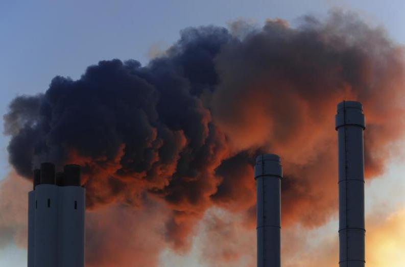 Grafica alusiva a ¿Qué son los servicios ambientales?