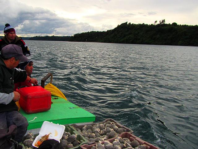 Grafica alusiva a El manejo de los recursos hidrobiológicos en nuestro territorio