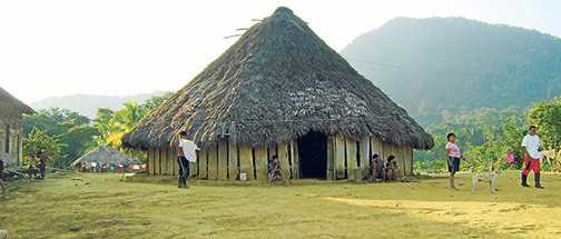 Grafica alusiva a El pueblo barí gana la pelea contra Ecopetrol en la Corte Constitucional. Ecopetrol debe suspender exploración en territorio indígena