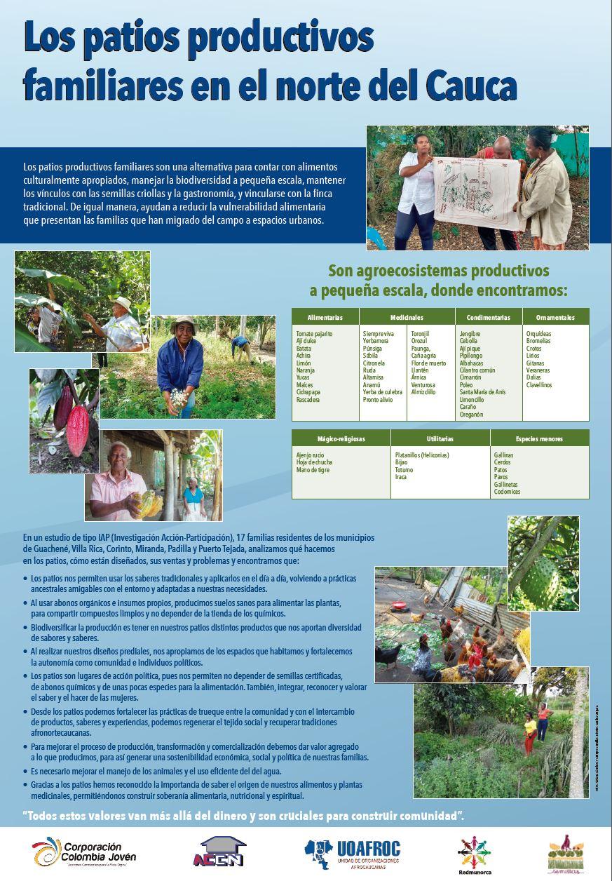 Gráfica alusiva a Los patios productivos familiares en el norte del Cauca