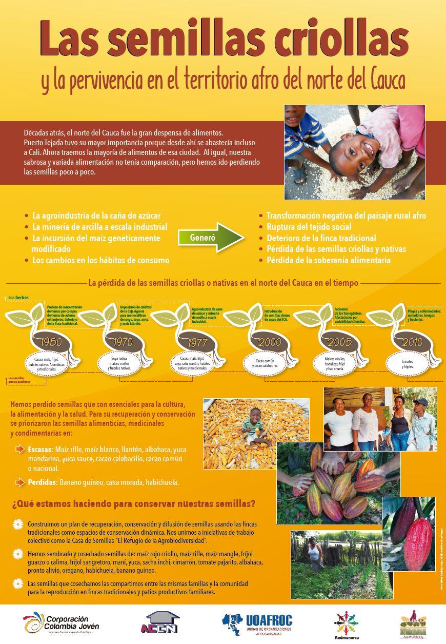 Gráfica alusiva a Las semillas criollas y la pervivencia en el territorio afro del norte del Cauca