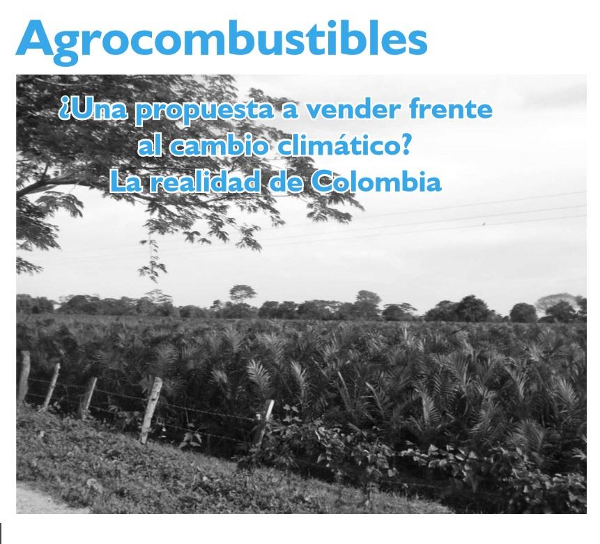 Gráfica alusiva a Agrocombustibles ¿Una propuesta a vender frente al cambio climático? La realidad de Colombia