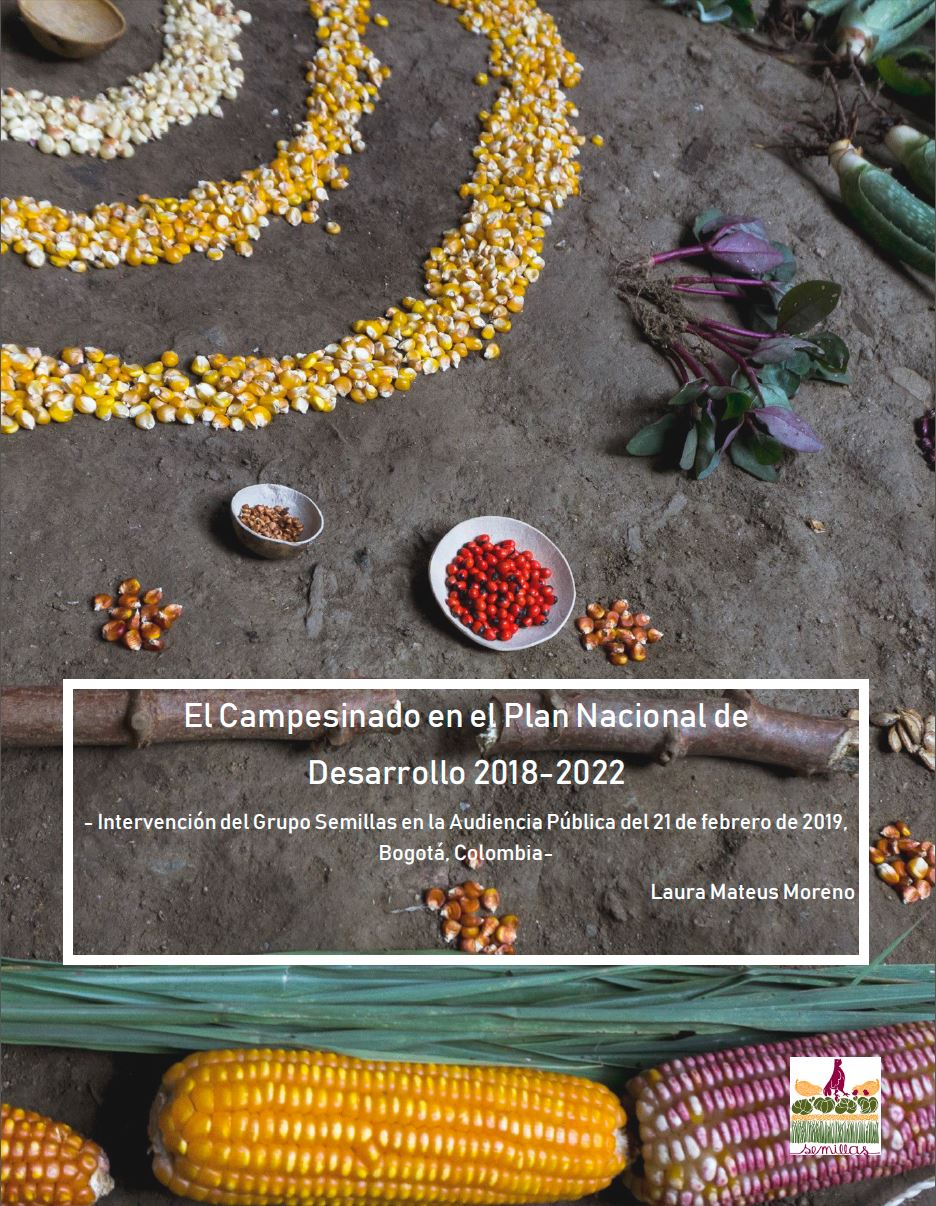 Gráfica alusiva a El Campesinado en el Plan Nacional de Desarrollo 2018-2022. Intervención del Grupo Semillas en la Audiencia Pública del 21 de febrero de 2019, Bogotá, Colombia.