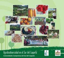 Grafica alusiva a Agrobiodiversidad en el Sur del Caquetá. Caracterización de especies y variedades criollas de semillas campesinas.