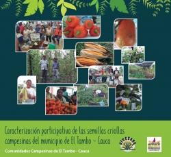 Grafica alusiva a Caracterización participativa de las semillas criollas campesinas del municipio de El Tambo - Cauca