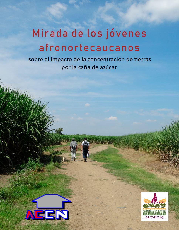Gráfica alusiva a Mirada de los jóvenes afronortecaucanos sobre el impacto de la concentración de tierras por la caña de azúcar.