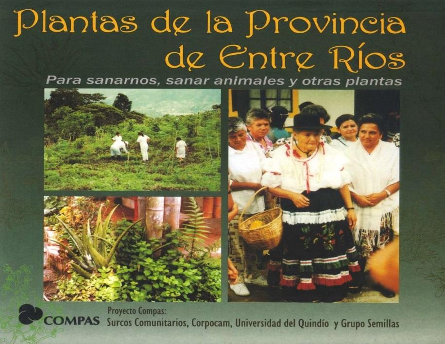 Gráfica alusiva a Plantas de la provincia de entre ríos. Para sanarnos, sanar animales y otras plantas
