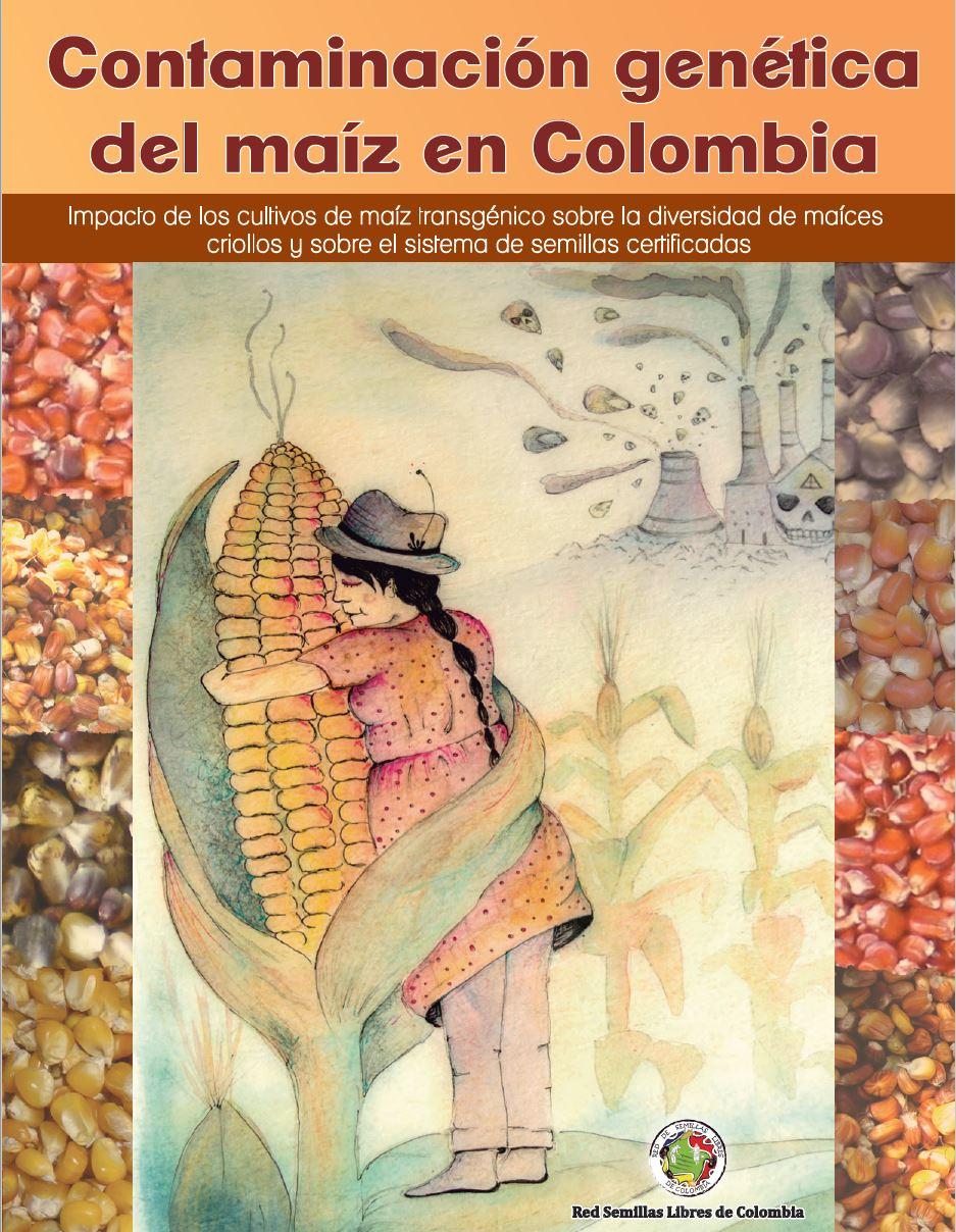 Imagen relacionada a Contaminación genética del maíz en Colombia. Impacto del maíz transgénico sobre los maíces criollos y el sistema de semillas certificadas