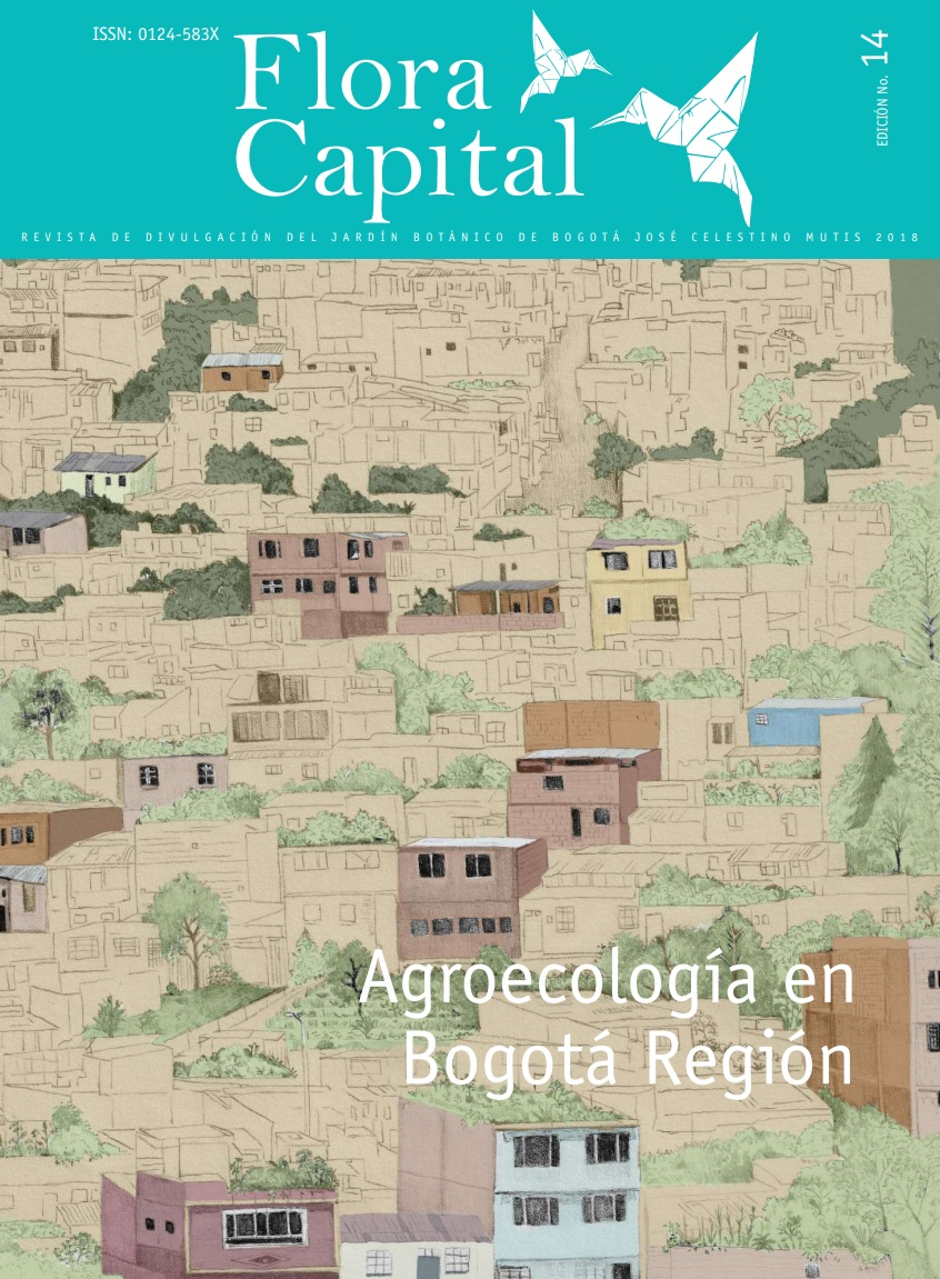 Gráfica alusiva a Revista Flora Capital No. 14