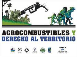 """Gráfica alusiva a """"Agrocombustibles y derecho al territorio"""""""