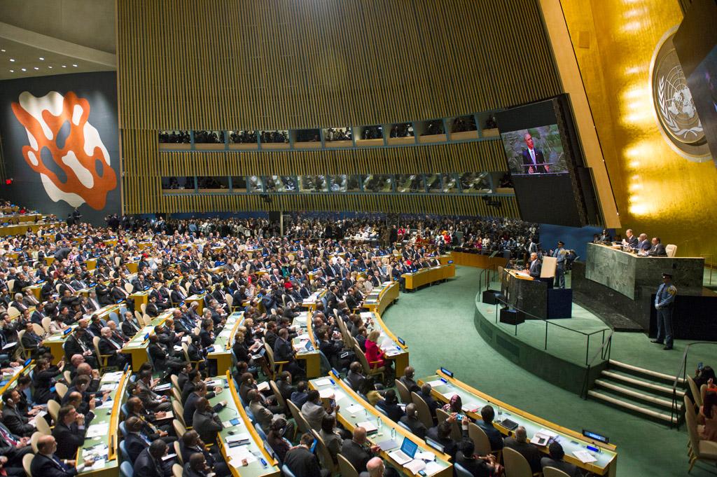 Grafica alusiva a Grupo Semillas presentó ante la ONU informe sobre situación de los transgénicos y los derechos humanos en pueblos indígenas de Colombia
