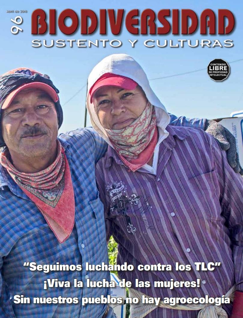 Gráfica alusiva a Revista Biodiversidad, sustento y culturas N° 96