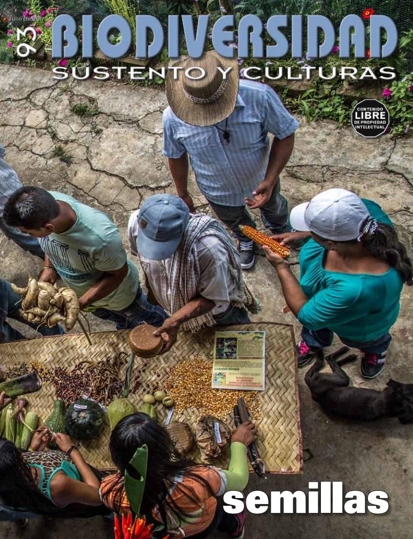Gráfica alusiva a Revista Biodiversidad #93 Especial sobre SEMILLAS