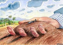 Gráfica alusiva a La extranjerización y el acaparamiento de tierras