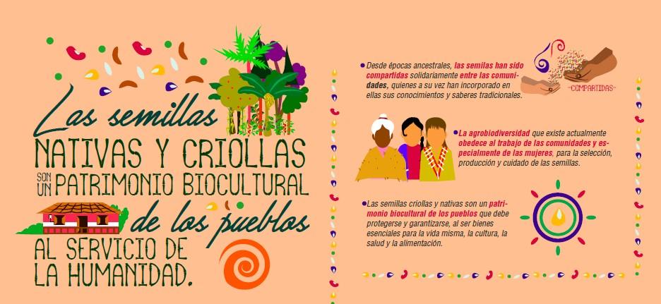 Gráfica alusiva a Infografía: Las semillas nativas y criollas son un patrimonio biocultural de los pueblos al servicio de la humanidad