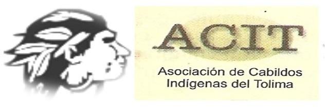 Gráfica alusiva a Declaración del Congreso de la Asociación de Cabildos Indígenas del Tolima, ACIT.
