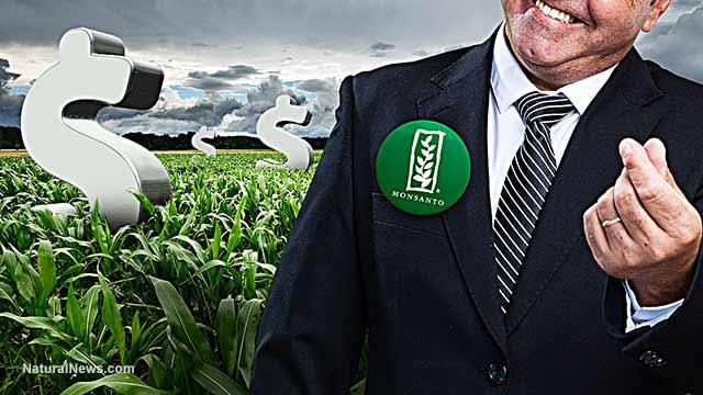 Gráfica alusiva a Monsanto cierra su año fiscal con unos beneficios de 1.825 millones, un 21,4% más