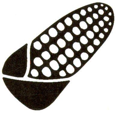 Gráfica alusiva a Documento de posición por la defensa de las semillas