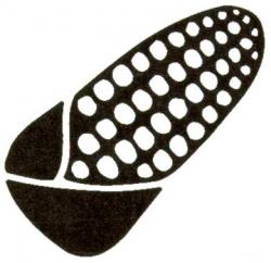 Documento de posición por la defensa de las semillas